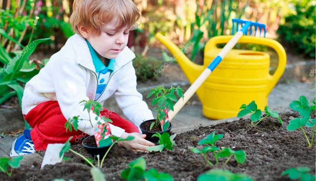 Proyectos y actividades para huertos escolares
